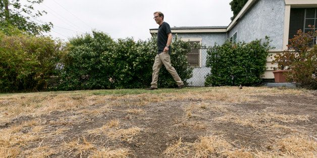 Michael Korte walks on his home brown lawn in Glendora, Calif., Thursday, July 17, 2014. The Southern California couple who s