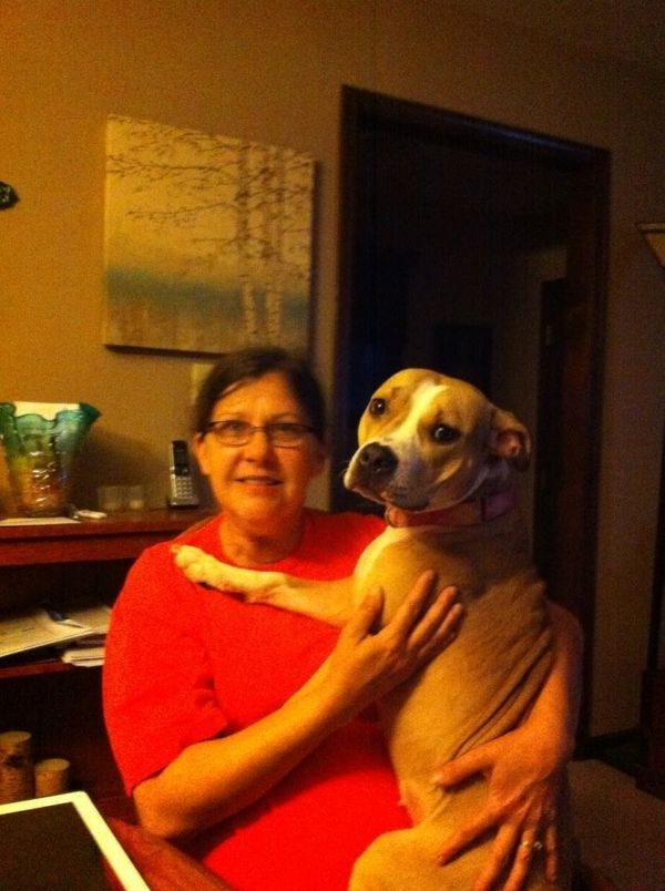"Lisa Grant's daughter gave Hope her name. <br><br> ""She said there's hope for these dogs,"" said Grant. ""I saw her on the loca"