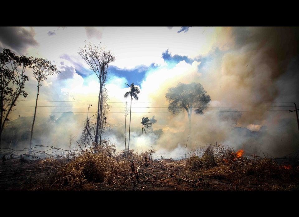 A portion of the Amazon Jungle, off of the Interoceanic Highway, is being burned. This practice is very common throughout the