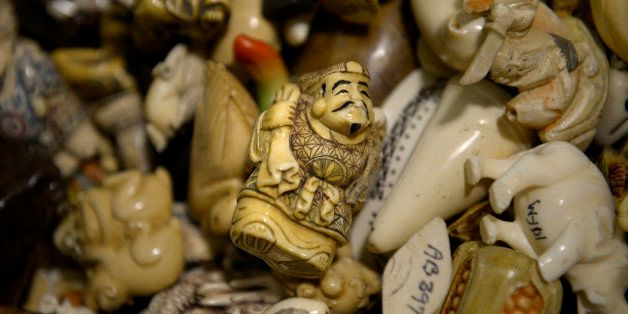 COMMERCE CITY, CO. - September 09: Ivory figurines, raw, polished and carved tusks will be part of an estimated 6 tons of con