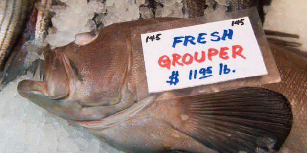 Fresh Grouper is for sale December 18, 2014, at  Eastern Market in Washington, DC.     AFP PHOTO/PAUL J. RICHARDS        (Pho