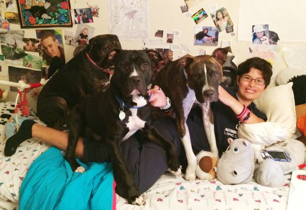 Kelly Duer takes in a lot of dogs who need socialization. She loves seeing these pups learn how to be well-loved pets. It's g