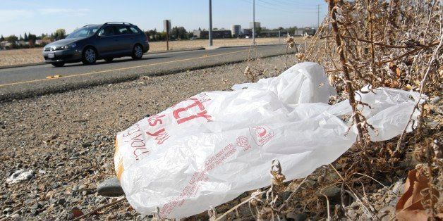 In this photo taken Friday, Oct. 25, 2013, a plastic shopping bag liters the roadside in Sacramento, Calif.  In an effort to