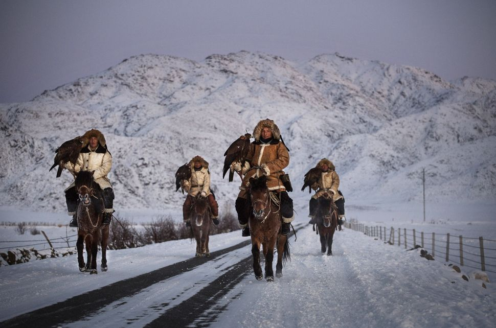 Chinese Kazakh eagle hunters, who are all brothers from the Beysenbay family, ride together with their eagles before a local