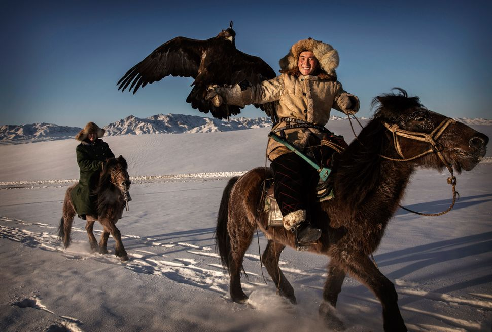 A Chinese Kazakh eagle hunter rides with his eagle as he arrives for a local competition  in the mountains of Qinghe County,