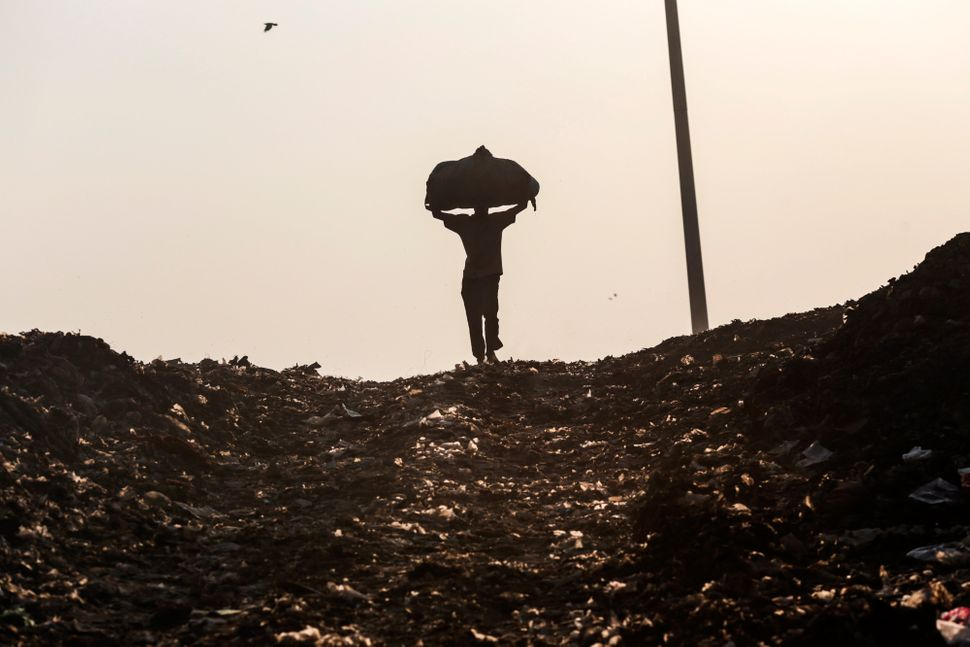 A rag picker carries a sack of sorted recyclable materials collected from garbage on his head at the Deonar landfill site in