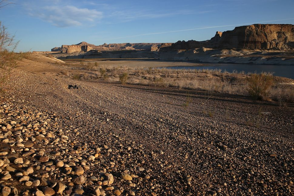 A section of Lake Powell that used to be under water stands dry on March 30, 2015 near Big Water, Utah.