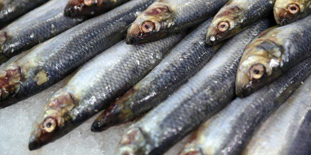 A picture taken on February 26, 2015 shows fresh sardine fish during the Paris international agricultural fair at the Porte d