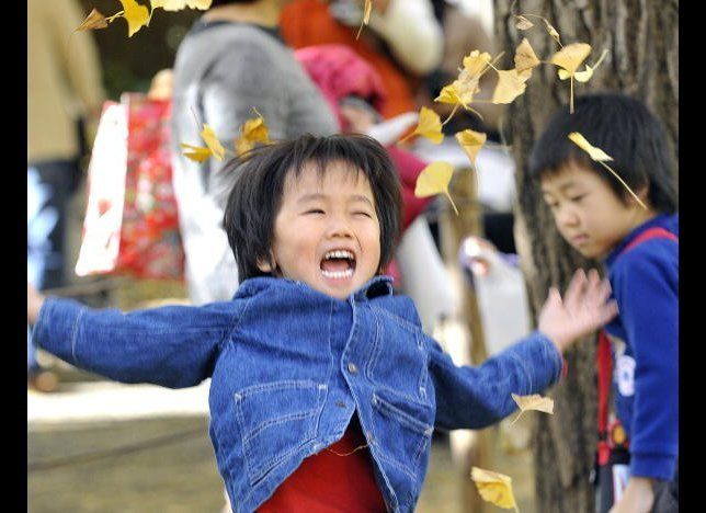 A little boy throws yellow ginkgo leaves into the air (Photo by YOSHIKAZU TSUNO, AFP/Getty Images)