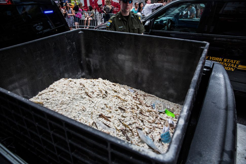 Ivory dust, created by destroyed ivory trinkets confiscated by law enforcement, sits in a bucket in Times Square.