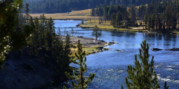 YELLOWSTONE NATIONAL PARK, WY - SEPTEMBER 25, 2014: The Yellowstone River flows through Yellowstone National Park in Wyoming.