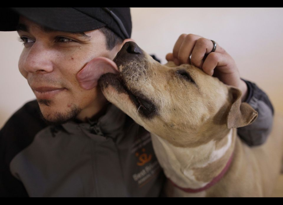 In this photo taken Thursday, Jan. 20, 2011, Dogtown manager John Garcia gets a lick on the face by Ellen in Kanab, Utah. Ell