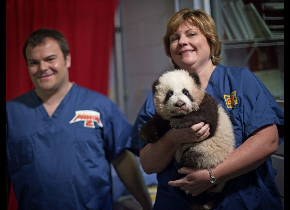 Dr. Hayley Murphy, director of veterinary services at Zoo Atlanta, right, brings out  a 3-month-old giant panda cub as actor