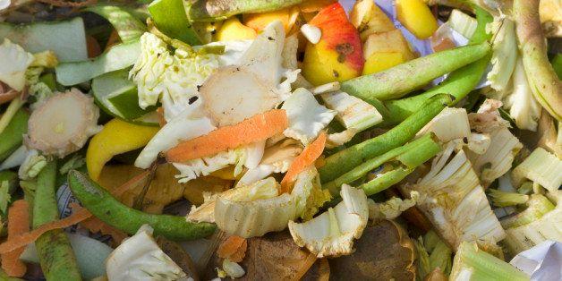 Vegetable peelings to create wormery