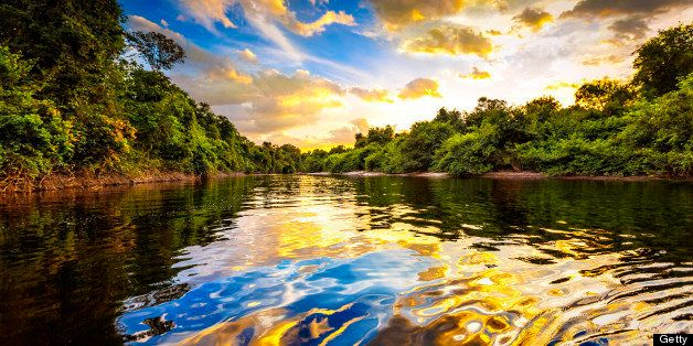 Dramatic colorful landscape on a river in the amazon state Venezuela at sunset