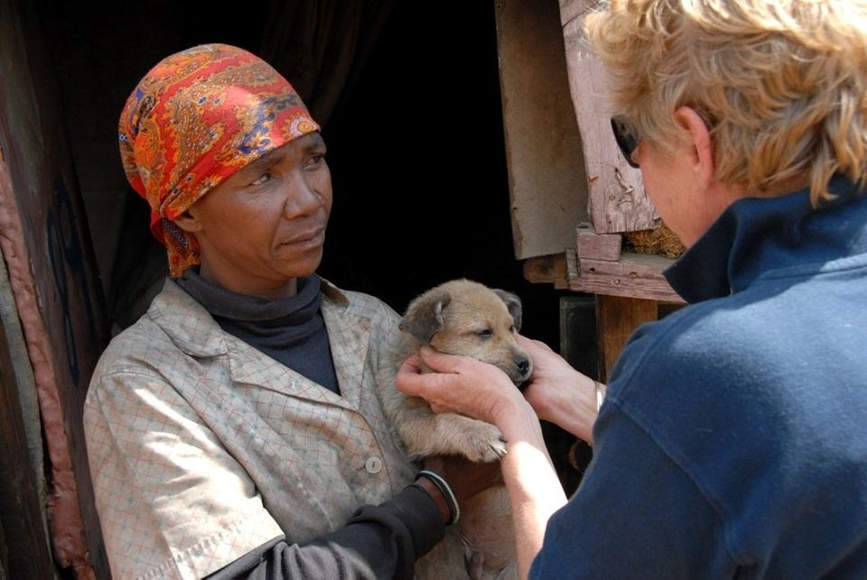 Cora Bailey, Project Founder of IFAW's Companion Animal Project in the townships of Johannesburg (CLAW), returns to a makeshi