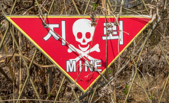 More than 1 million landmines were laid in border areas including the DMZ and the Civilian Control Zone in the South.