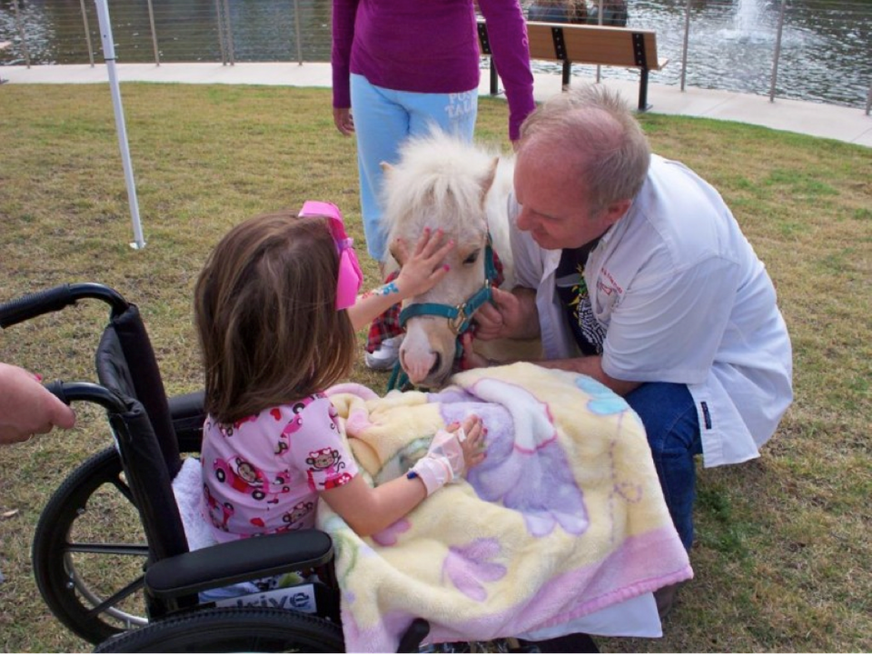 "Mission: <a href=""http://www.minisandfriends.org/"">Minis and Friends</a> brings mini horses and donkeys to visit with people"