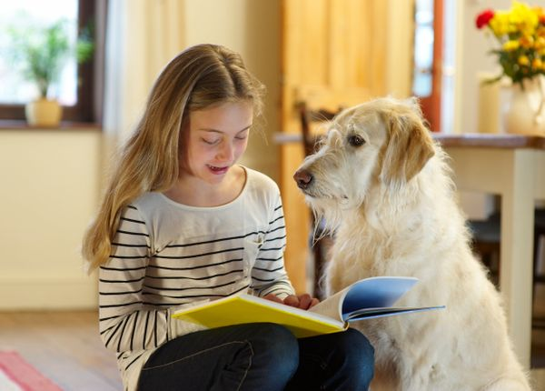 """If you're grateful for your furry best friend, the obvious volunteer opportunity is to walk a dog at the <a href=""""http://www."""