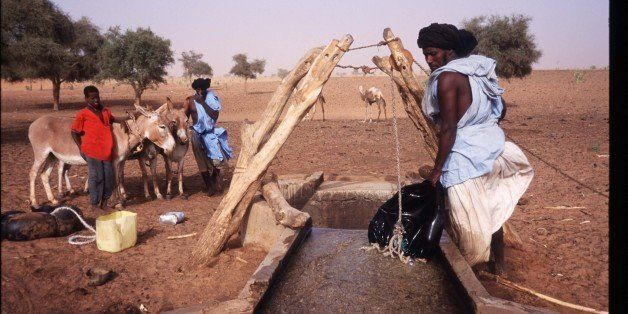 314414 43: Slave herdsmen water animals at an oasis June 15, 1997 near Tiguent, Mauritania. Over ninety thousand blacks remai