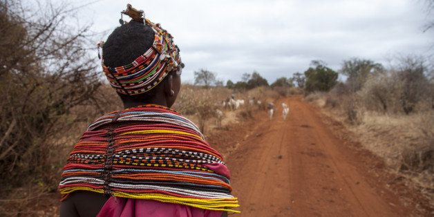 A young Samburu woman dressed in traditional colorful attire steering its herd of goats to find pastures around Marsabit, Eas