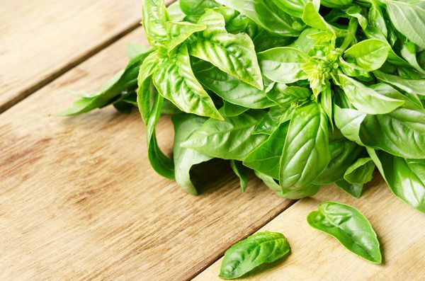 """Herbs are the best way to add flavour and chlorophyll to your food, but they often go slimy,"" Fetterly says. Keep basil in a"