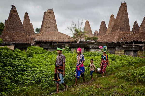 Sumbanese people make their way during the pasola war festival at Wainyapu village on March 7, 2013 in Sumba Island, East Nus