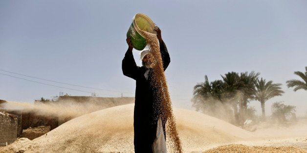 Fixing the Food System in the MENA Region
