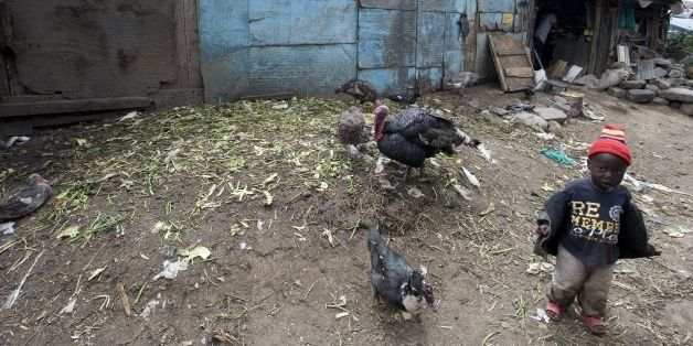A toddler walks by a turkey and ducks in the slum of Mathare, one of the poorest slums in Nairobi, on May 28, 2014. Mathare i