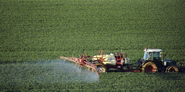 A farmer sprays a chemical fertilizer on his wheat field in Trebons-sur-la-Grasse, southern France, on April 20, 2015. The fe