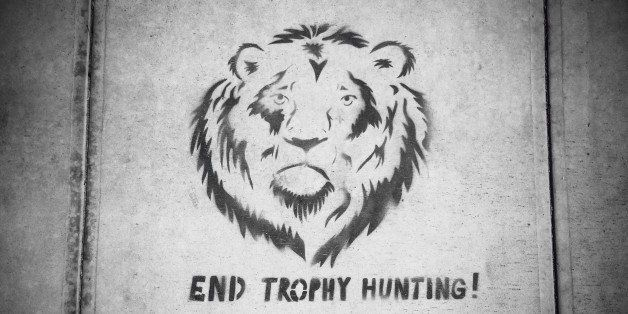 September 20, 2015 In reaction to the recent killing of Cecil the Lion in Zimbabwe, a stencil art protest sign appears on the
