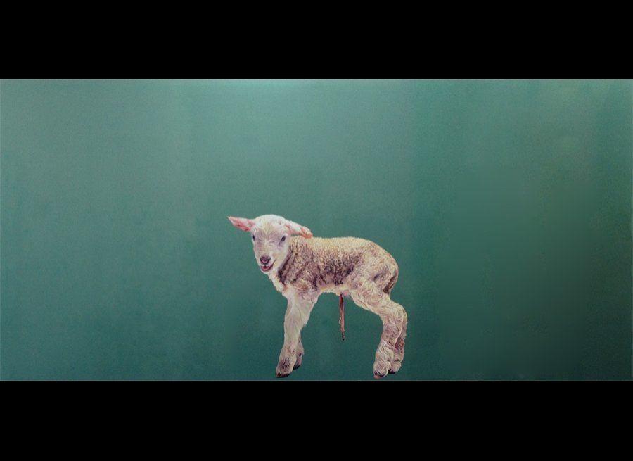 "Westergren, ""Lambchop,"" oil and car paint on aluminum, 40 x 84 inches (101.60 x 213.36 cm), 2012, courtesy of Patrick Painte"