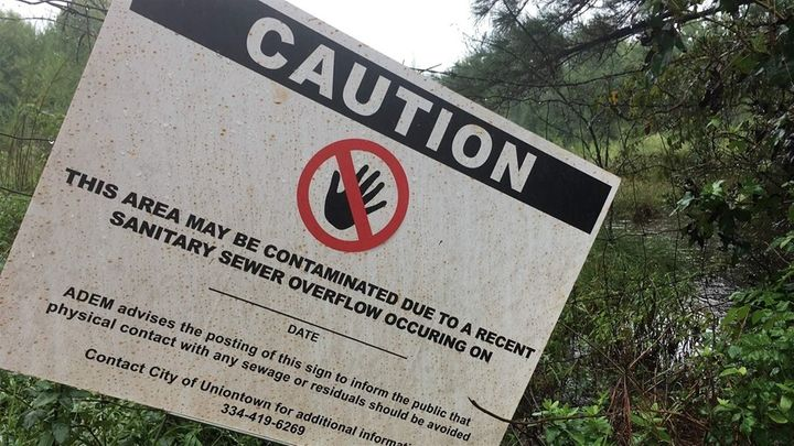 Fecal bacteria was eight times higher than what is allowed under a state permit, testing by local groups found.