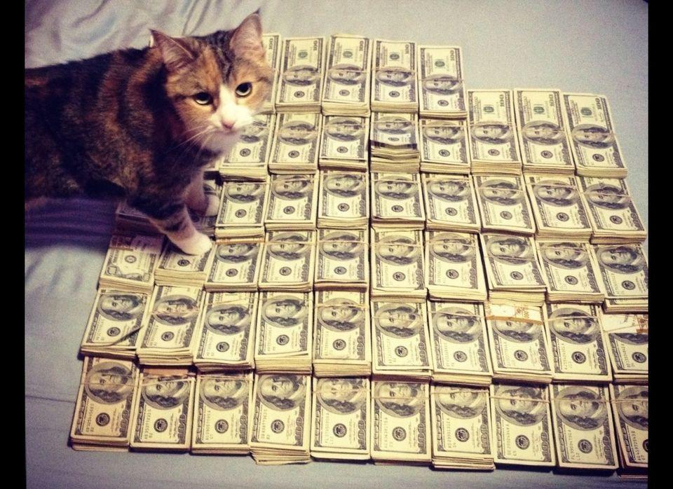 """(<a href=""""http://cashcats.biz/"""" target=""""_hplink"""">Cas$hCats.biz</a>)"""