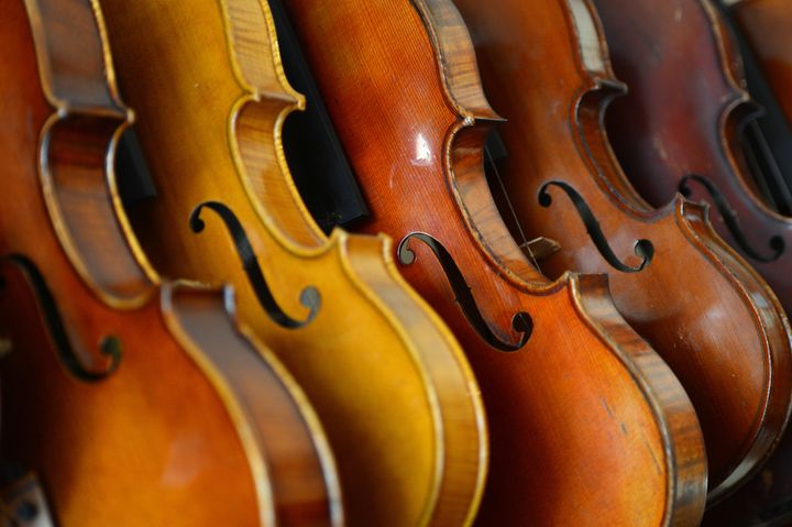 Violins are displayed in the workshop of Mathias Menanteau, a French violin maker on January 30, 2013 in Rome. After studying