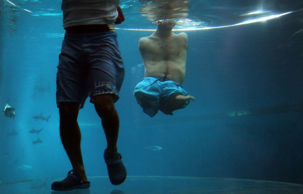 Nick Vujicic, right, is accompanied by a life guard as he treads water in an acrylic enclosure keeping safe while diving amon