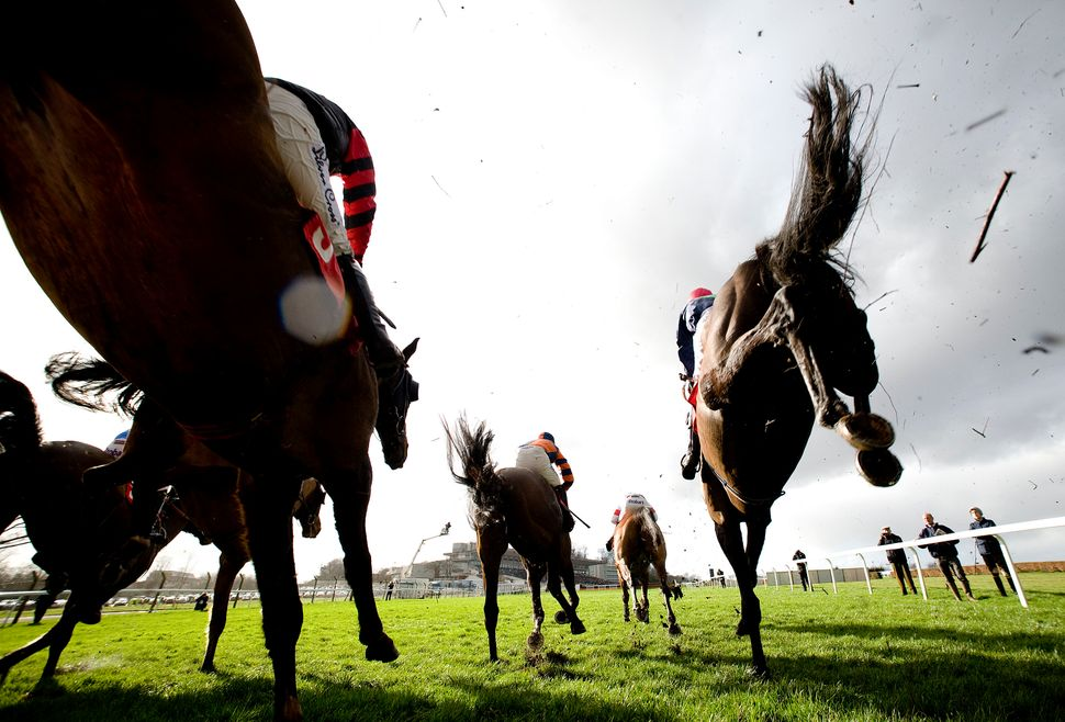 Runners in The Betfred 'Double Delight' Novices' Limited Handicap Steeple Chase clear a fence at Sandown racecourse on Februa