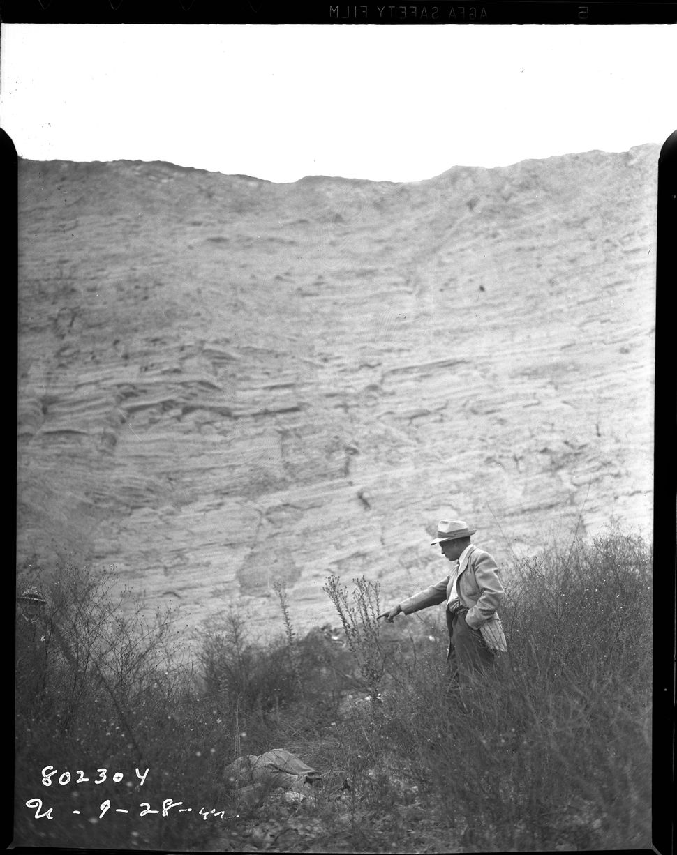 """John Doe #82"" Detective points to victim camouflaged in the brush below the foothills. Date: 9/28/1942"