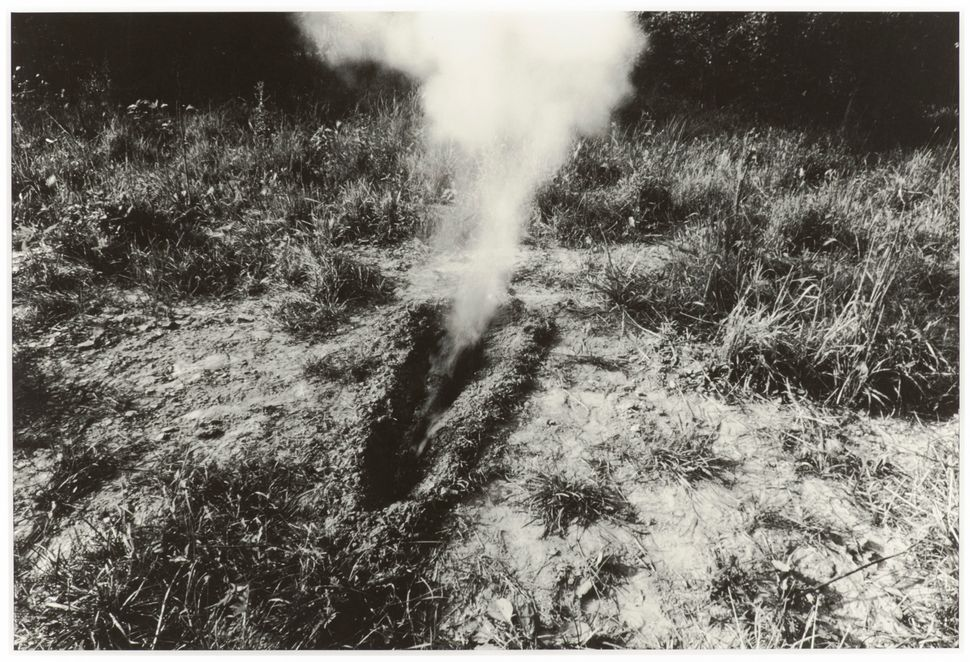 Ana Mendieta, Untitled (from the Silueta series), c. 1978. Collection Museum of Contemporary Art Chicago, Bernice and Kenneth