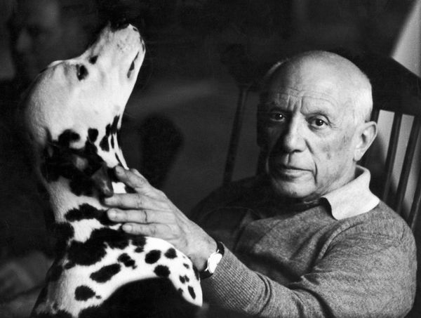 "Pablo Picasso was canine crazy and had almost as many dogs as he had lovers. ""Perro"" the Dalmation made his way into a <a hre"