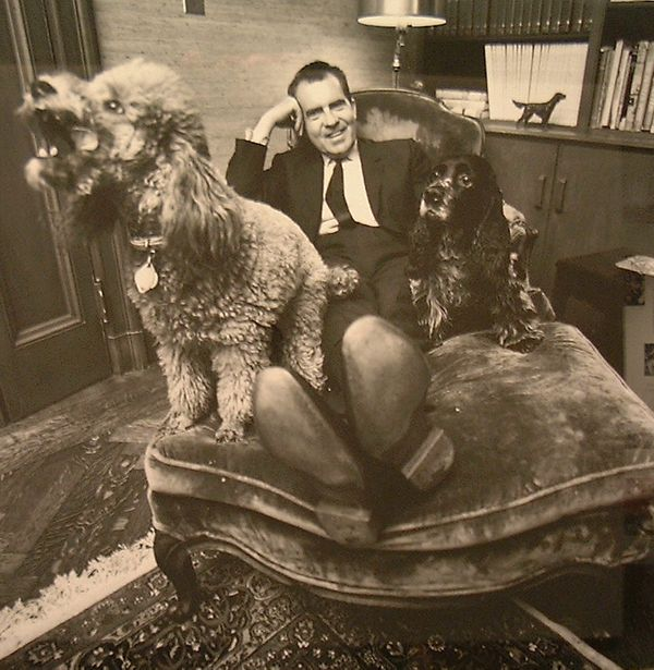 "President Nixon's adorable dog ""Checkers"" (pictured right) has become somewhat of a political legend. The speech that Nixon g"