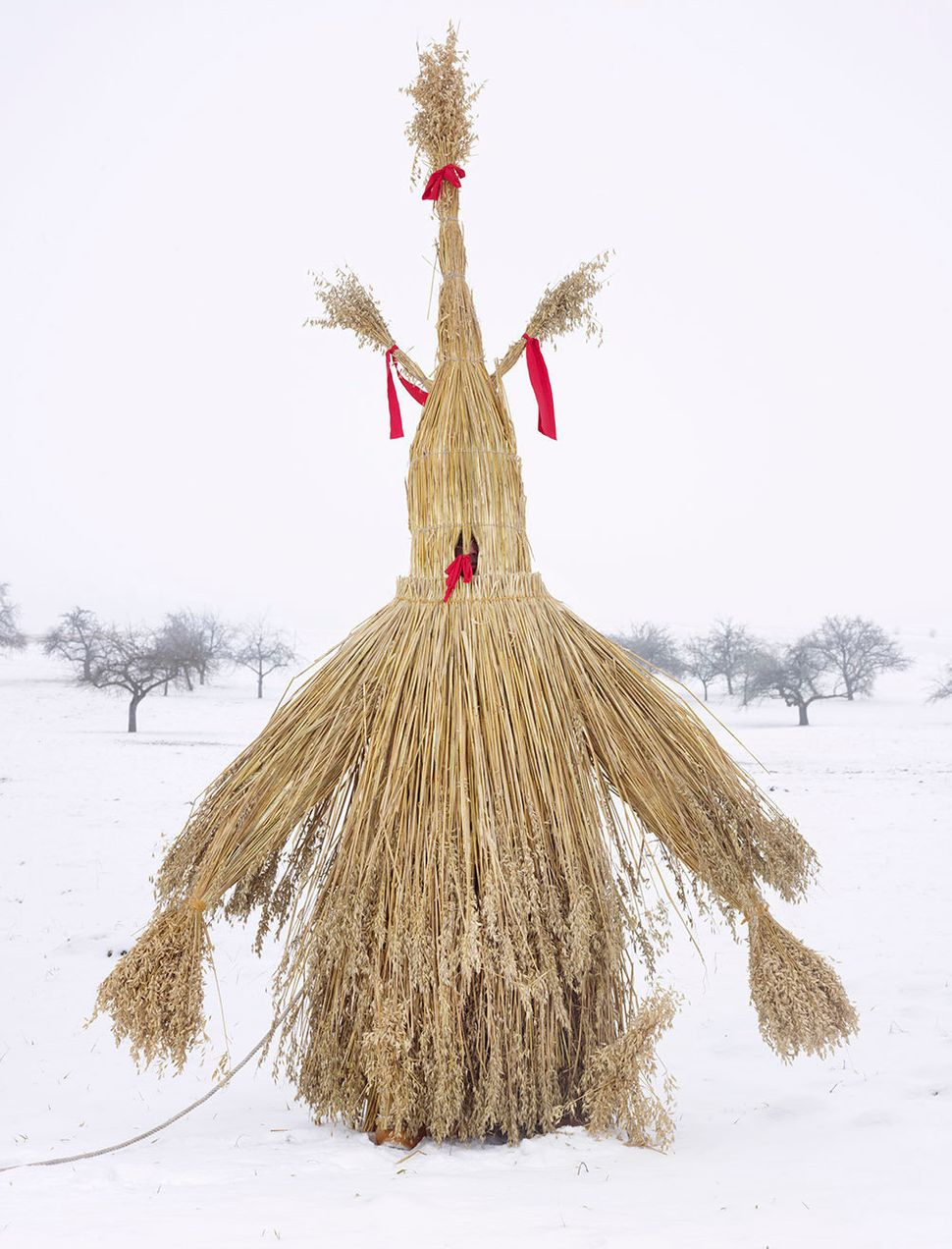 Charles Fréger From the series Wilder Mann Strohmann (Straw Man), Leipferdingen, Germany, 2010-2011 Inkjet Print © Charles Fr