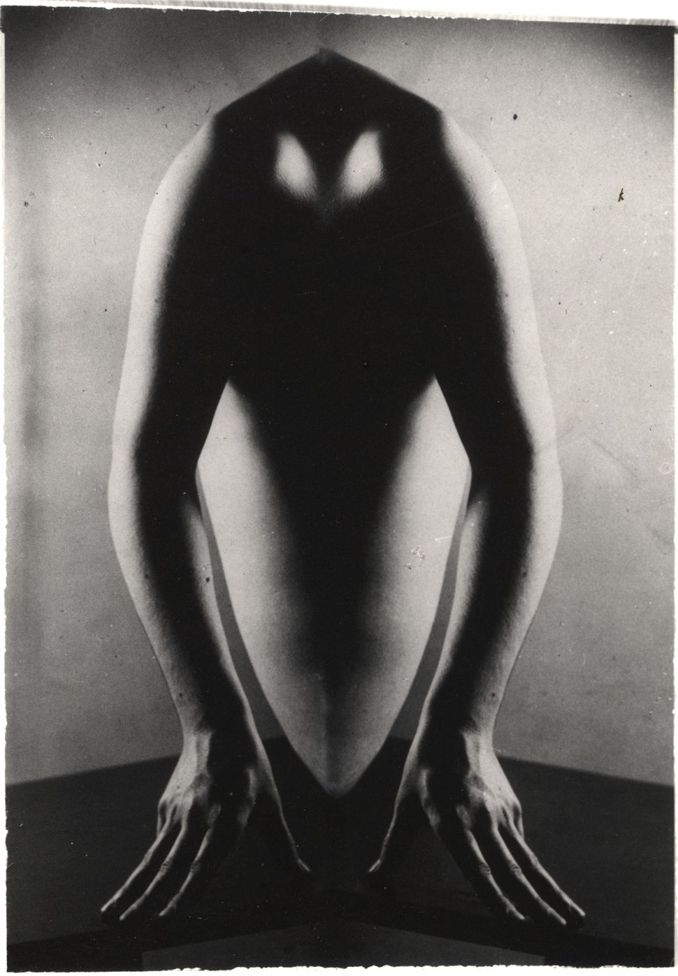 Nude, Distortion, 1956