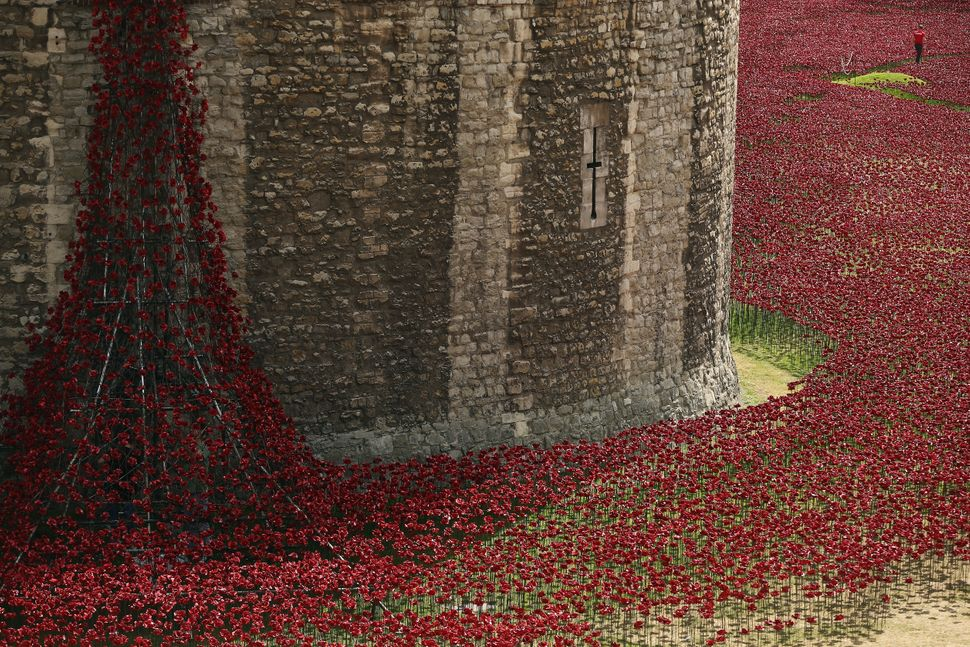 Each ceramic poppy represents an allied victim of the First World War and the display is due to be completed by Armistice Day