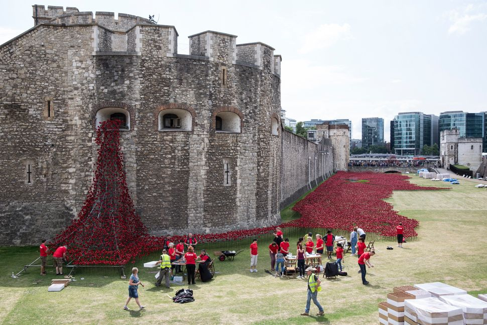 Volunteers assemble an installation entitled 'Blood Swept Lands and Seas of Red' by artist Paul Cummins, made up of 888,246 c