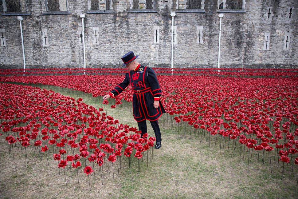 Yeoman Serjeant Bob Loughlin admires a section of an installation entitled 'Blood Swept Lands and Seas of Red' by artist Paul