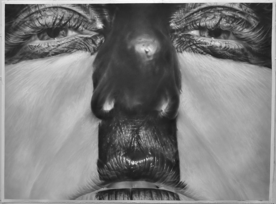 """Blocked"" 50"" x 67"", graphite on paper, 2012"