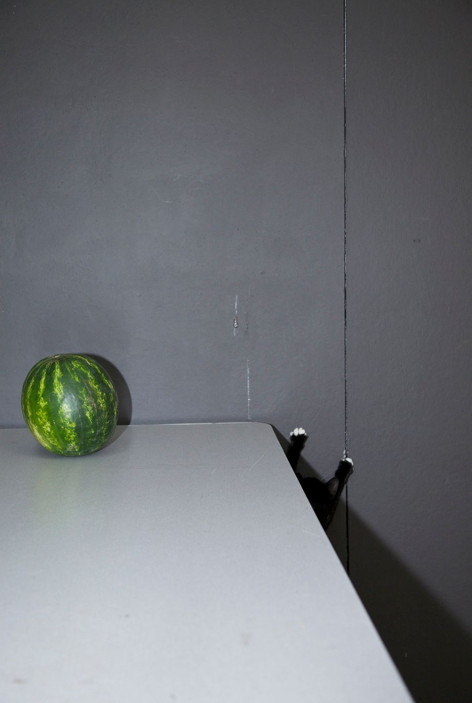 "<a href=""http://sandrastark.viewbook.com/"" target=""_blank"">Sandra Stark</a>, ""Rayburn and the Watermelon,"" 2014"