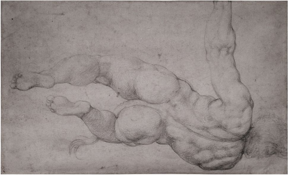 Michelangelo Buonarroti, Study of Satyr (The Last Judgement), 1540, Black chalk on paper, 7.25 x 11.75 in. Collection of Mr.