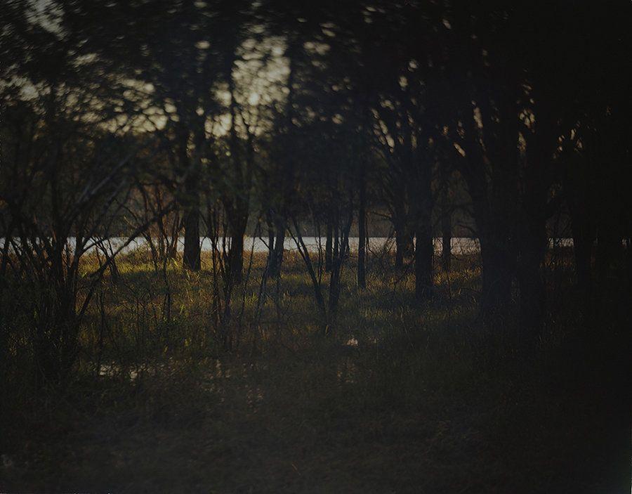 Moody Forrest, Altamaha River